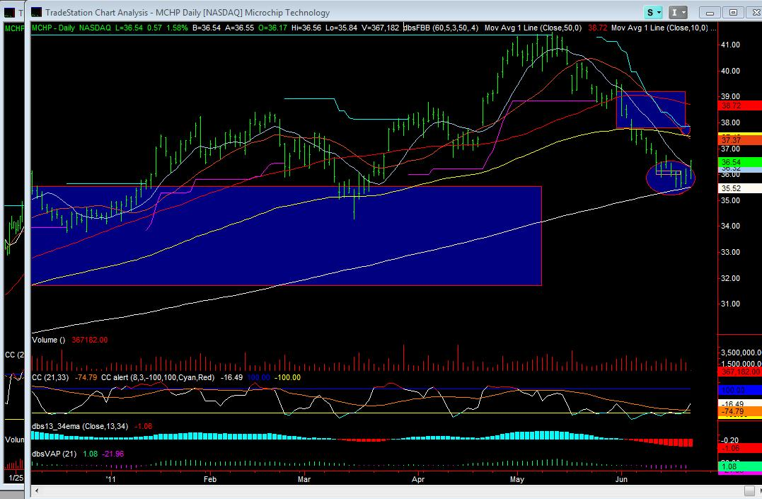 MCHP Daily